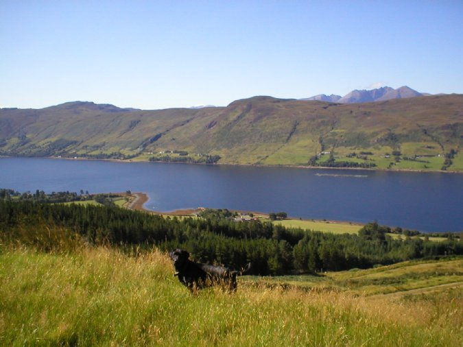 Loch Broom and Leckmelm Estate near Ullapool